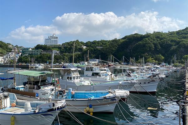 雑賀崎漁港の様子-1
